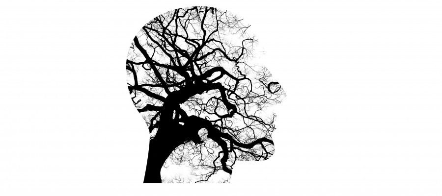 mental-health-2313430_19201-900x400